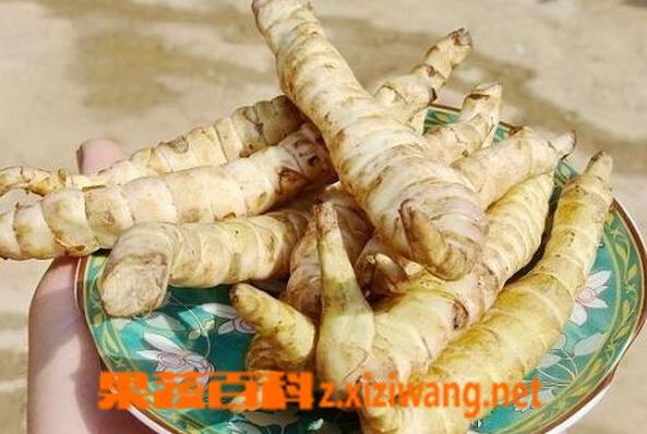 果蔬百科云南野菜